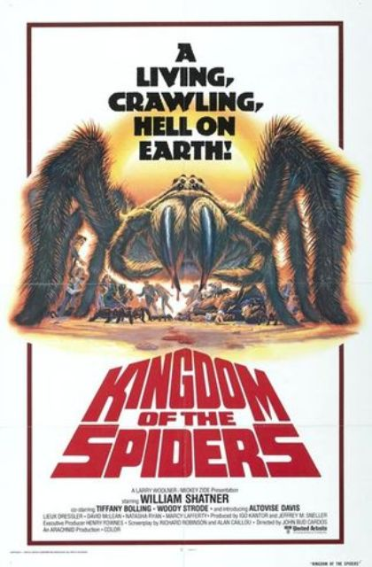 kingdom-spiders