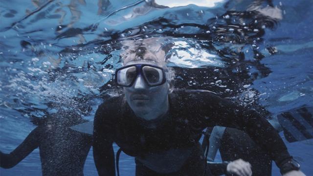 reef-visor