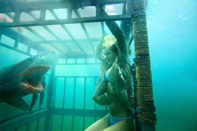 shark-night-3d-movie-sara-paxton