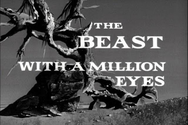 BeastWAMEyes (8)