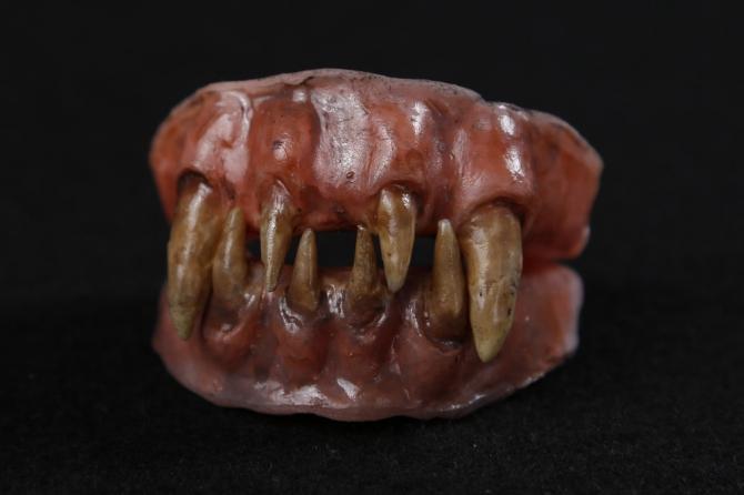 Creature Dentures