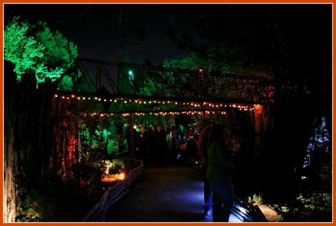 chicago-botanic-halloween-train