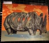 Rhino Chicago