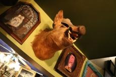 Trundle Boar