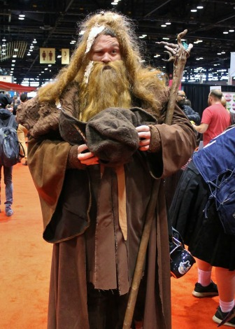 brown wizard